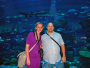 Dubaj: Dubai Mall – Aquarium & Underwater ZOO